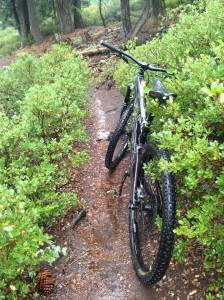 Great Singletrack